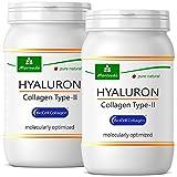 NP-Vital - Cápsulas de Biocell Collagen® Express (con colágeno-II, ácido hialurónico) 1000mg de colágeno/día para la piel, el cabello y las articulaciones (2x60 cápsulas de Biocell Collagen®)